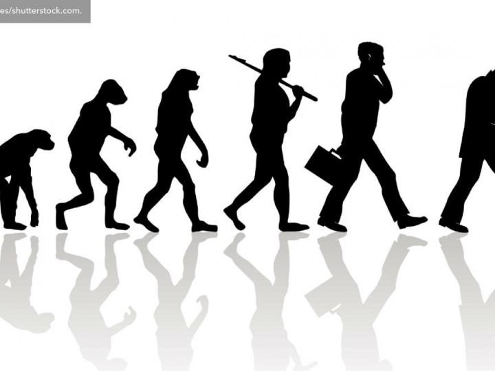 Darwinismo digital: convertir o extinguirse