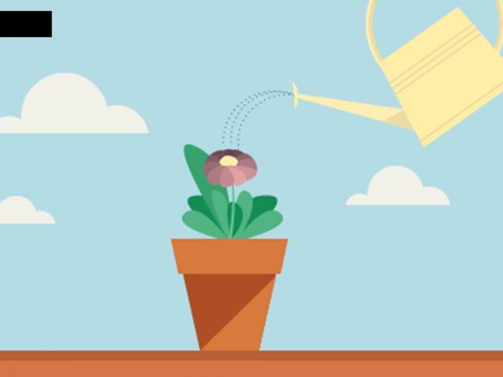 El Arte De Cultivar Leads Para Generar Ingresos.